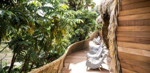 Bisate Lodge Wilderness Safaris